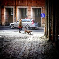 Дама с собачкой. На улицах Стокгольма :: Андрей Илларионов