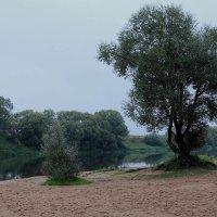 А берега вдыхают тишину... :: Юрий Морозов