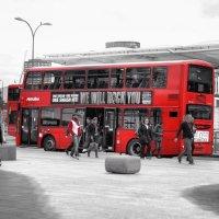 London :: Martins K