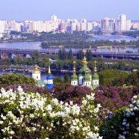 Великолепный Киев. :: Надежда Ивашкина