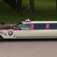 Свадебный лимузин... :: Nonna