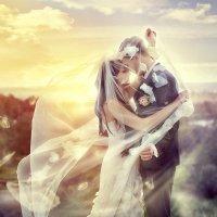 Свадебное фото :: Виталий Лисовой