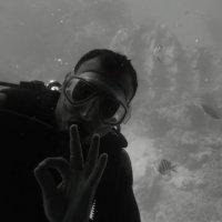 В красном море :: Александр Шамов