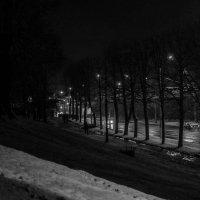 Огни ночного города :: Юлия Костенко