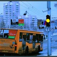 Желтое на синем... :: Александр Копалов