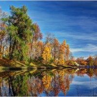 Осенняя картинка :: Алексей Говорушкин
