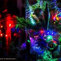 Christmas theme. Наша ёлка:) :: Dainius Apelsinavicius
