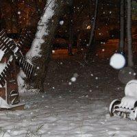 Пернвый снегопад :: Наталья Тутова