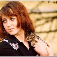 Две котейки :: Константин Нусенко