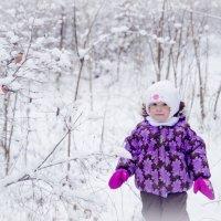 зимняя сказка :: Светлана Ларина