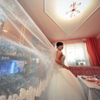 Свадебная фотография... :: Александр Воронов