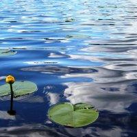 купание облаков :: liudmila drake