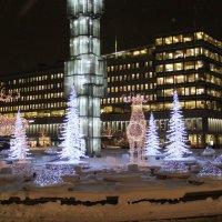Рождественский Стокгольм :: liudmila drake