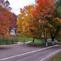 недавно была осень... :: Светлана З