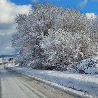 зимний этюд :: valeriy g_g