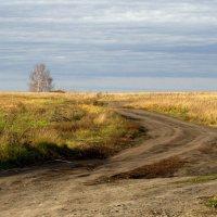 Осень. :: Людмила Якимова