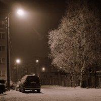 Ночь декабрьская, туманная (монохром) :: Елена Перевозникова