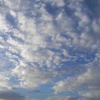Парад облаков :: ЕЛЕНКА Литвиновская