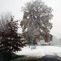 Зимы прошлых лет_1 :: Яков Геллер