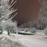 Наступление холодов 2 :: Сергей