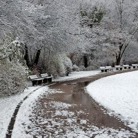Первый снег :: Boris Alabugin