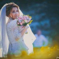 wedding :: Elmar Alekperov