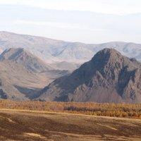 Осенний пейзаж :: Ольга Иргит