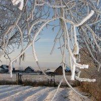 Зима в деревне :: Геннадий Ячменев