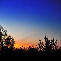 Красотой преобразившись, солнце утречком встаёт... :: Андрей Шейко