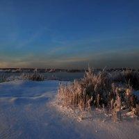 зимний рассвет коньячного тона :: sergej-smv