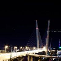 """Владивосток. Мост через бухту""""Золотой Рог"""" :: Оля К"""