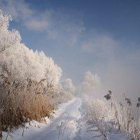 Морозный воздух :: Олег Самотохин