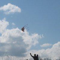 Воздушный змей :: Никита Дмитриев