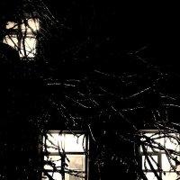 три  окна :: Дмитрий Потапов