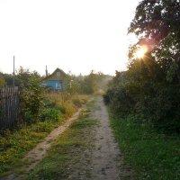 уДачное утро! :: Андрей Самуйлов