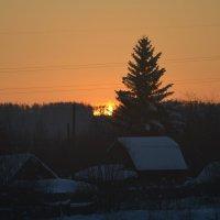 Зимний закат 2 :: Светлана Франчук