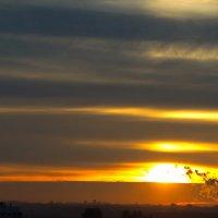 Рассвет над городом :: Владимир Степанчук