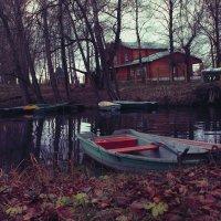 Хочется там жить... :: Юля Райдо