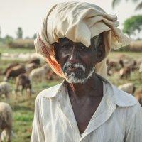 Артем Жушман - Портрет индийского пастуха
