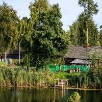 Деревня :: Владимир Молочев