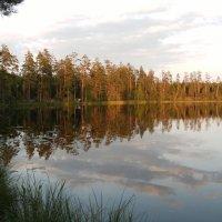 Озеро светлое :: Kov66