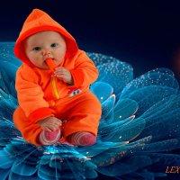 Алинка :: Lex Photography