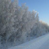 Зима :: Ильдар Тухбагалиев