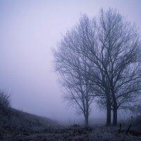 Туманный рассвет :: Роман Хоменко