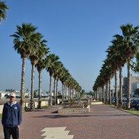 Путешествия по северу Израиля , Наария. :: Алексей Килимник