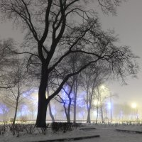 Туман, туман, над всей землёй туман... :: Михаил Лесин