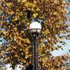 Осень :: Агриппина