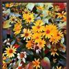 Оскнние цветы :: Владимир Бровко