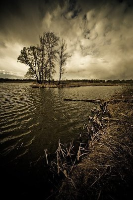 Выразительное улучшение фото в программе Фотошоп Лайтрум