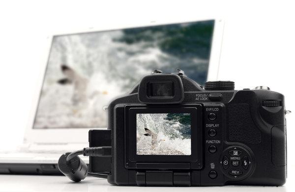 Фотоальбомы и онлайн сервисы
